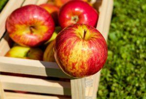 Schnell abnehmen in einer Woche mit Äpfeln