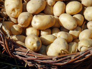 Schnell Abnehmen in einer Woche mit Kartoffeln
